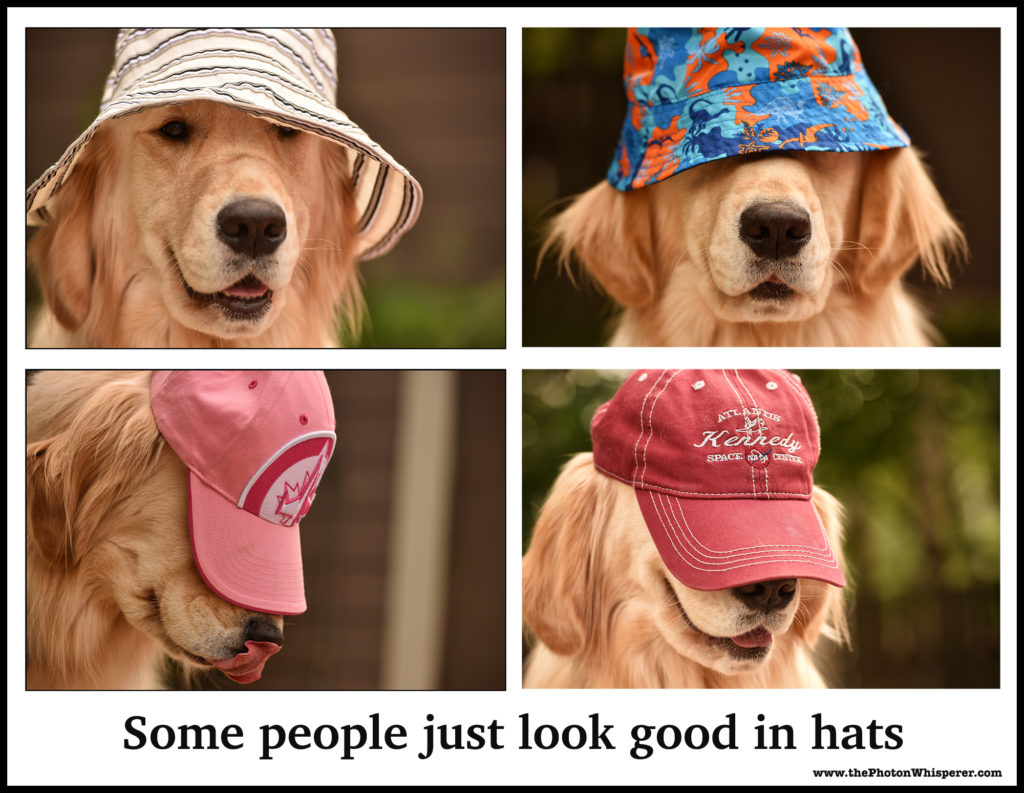 some people just look good in hats