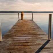 the end of the dock – two ways to get there