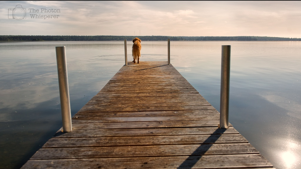 end of the dock 1