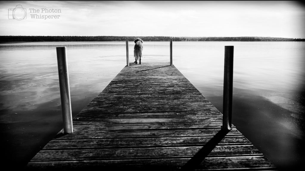 end of the dock 2