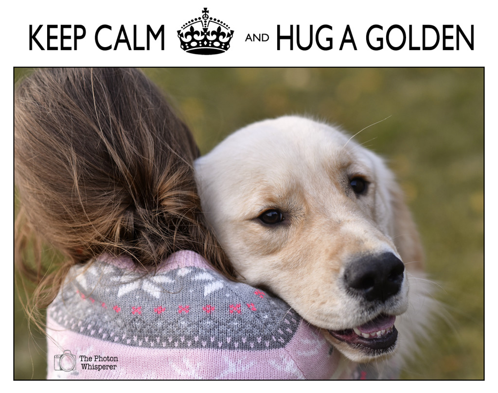 45-52 keep calm and hug a golden
