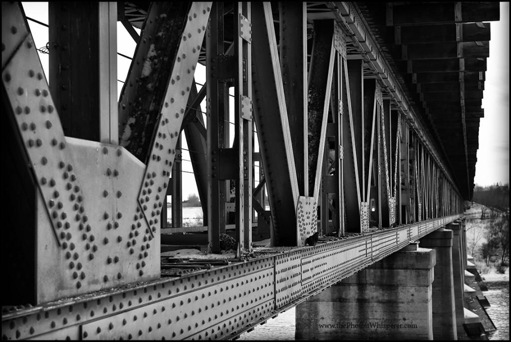 rail bridge birdhouse